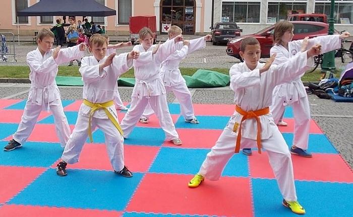20160603-sportovni-den-vmy_karate_3865